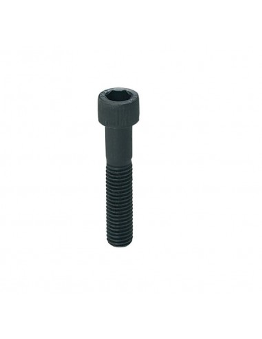 M8 Hexagon Socket Head Cap Screws black